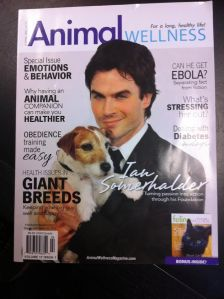 AW Cover